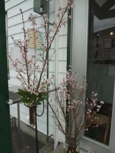15.2.3.桜1